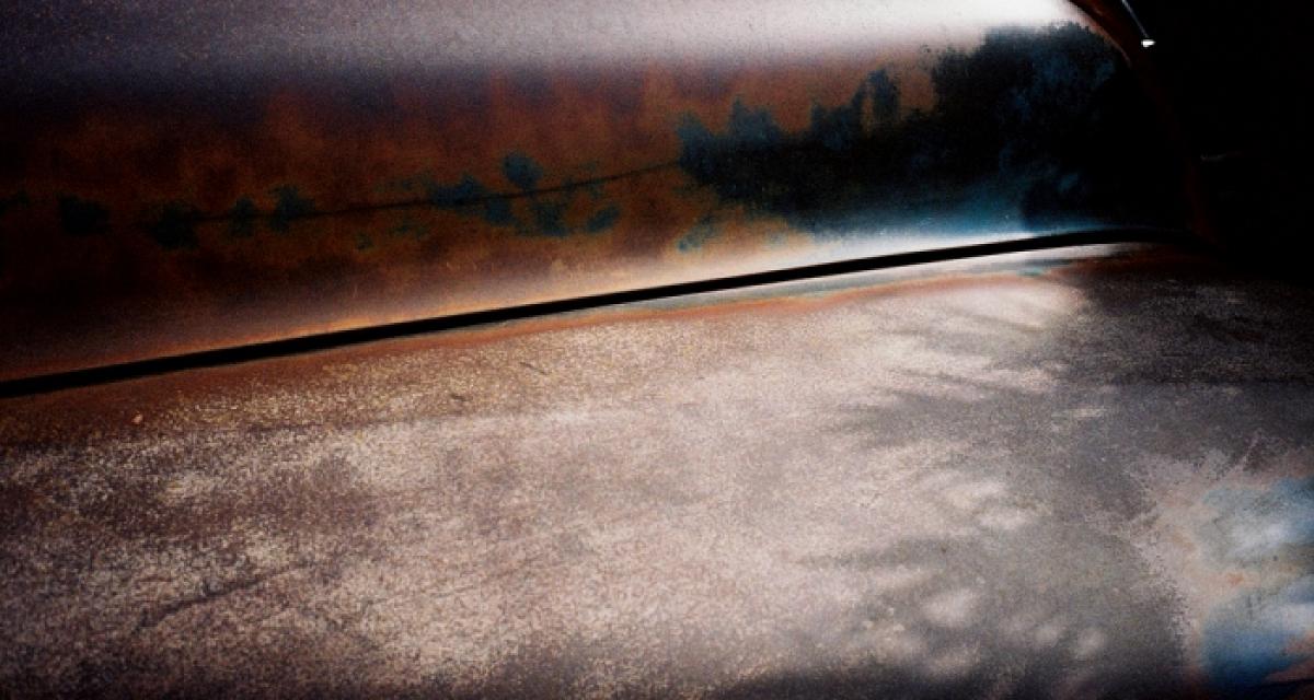 Landscape / Portrait. 1980 to present